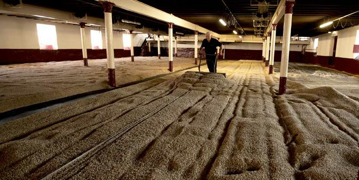 the malting floor for the Balvenie