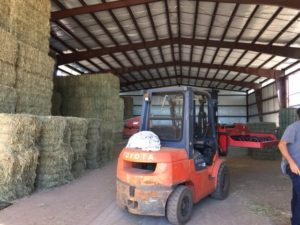 This fork lift does the job of many men by stacking hay bales vertically and horizontally.  It is an amazing thing to watch.